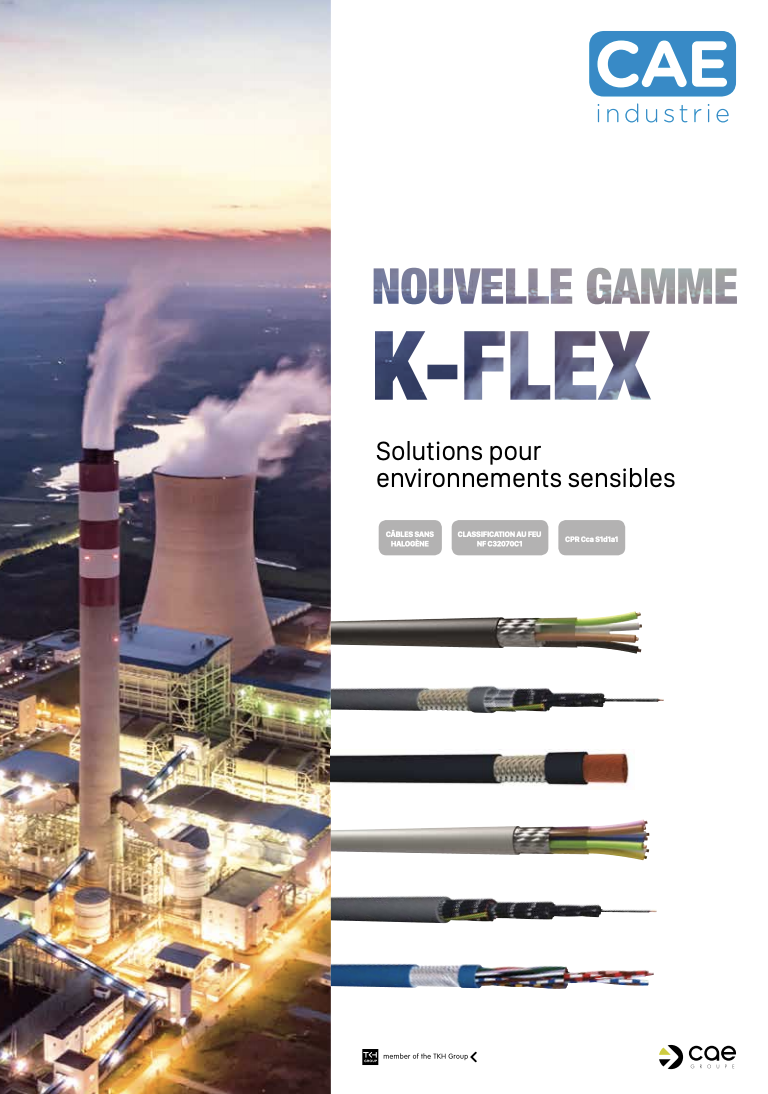 Flyer CAE Groupe - Industrie