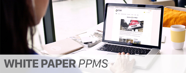 White paper PPMS